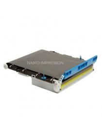 Cinturón de transferencia compatible Oki C710/ C5550MFP/ C5600/ C5650/ C5700/ C5750/ C5800/ C5850/ C5900/ C5950